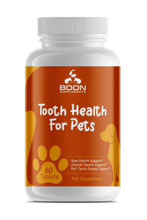 Tooth Health for Pets